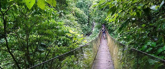 rainmaker-reserve